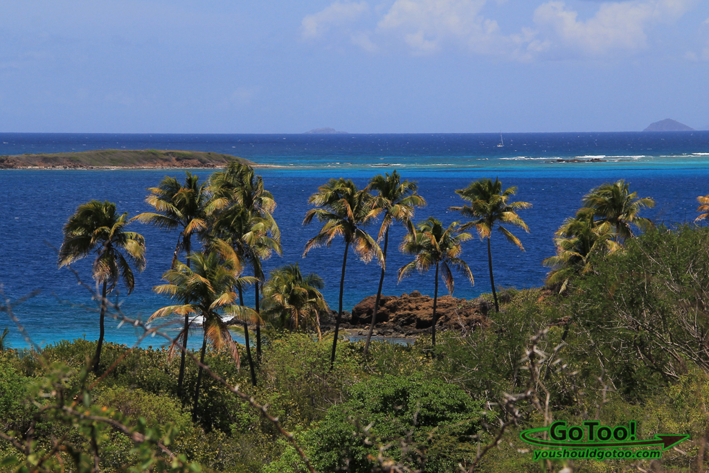 Overlooking Zoni Beach on Culebra
