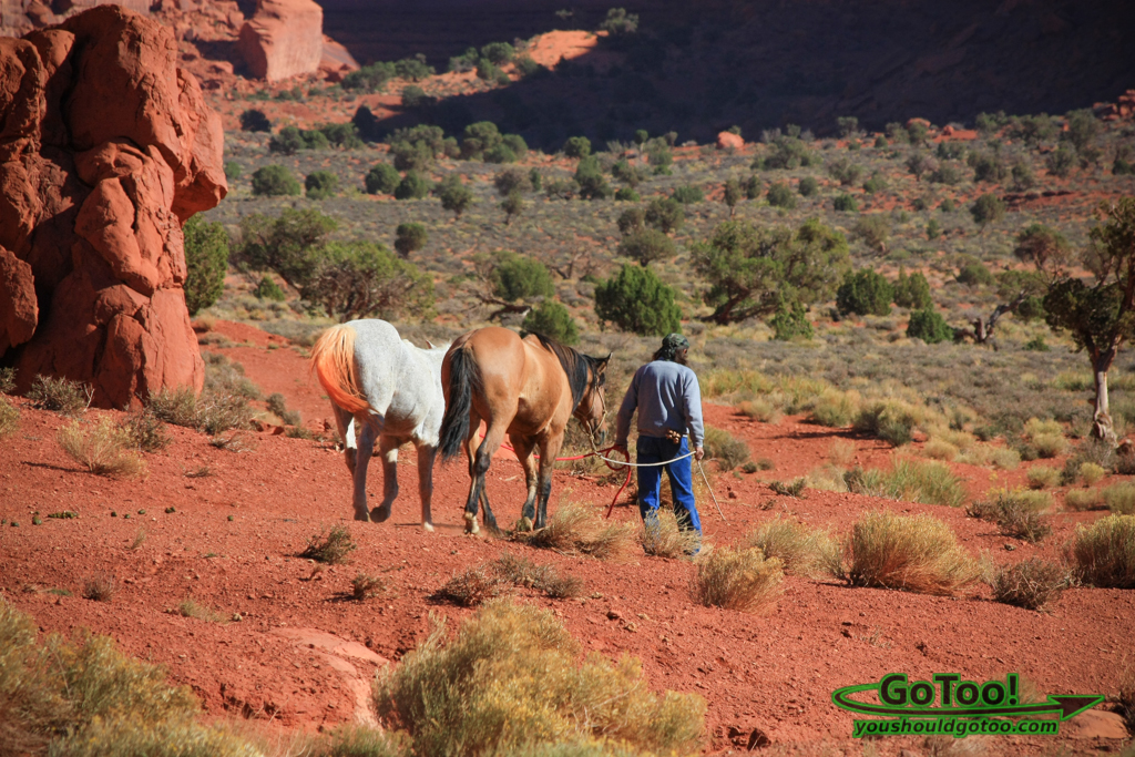 Horse Rides and Guided Tours Monument Valley