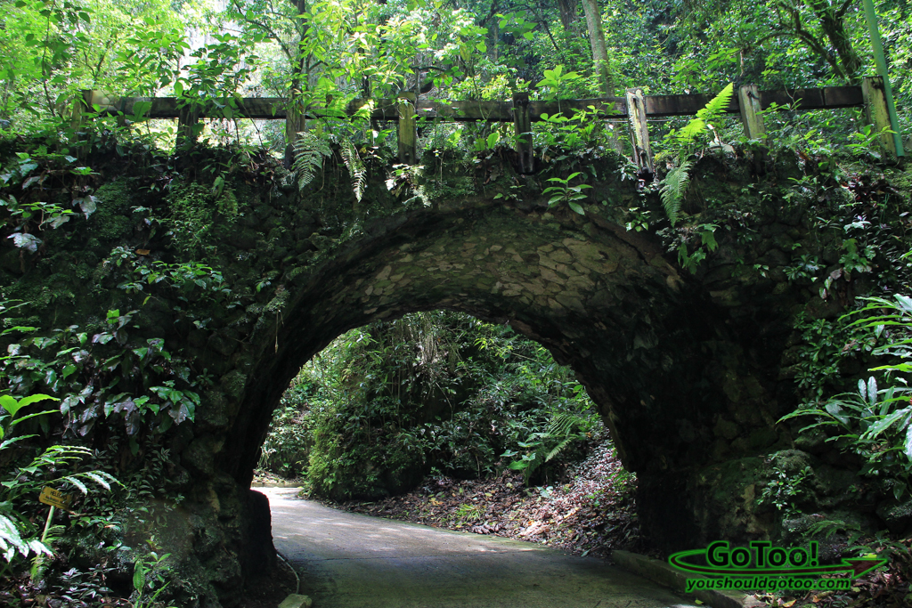 Bridge-Near-Rio-Camuy-Cave-Entrance