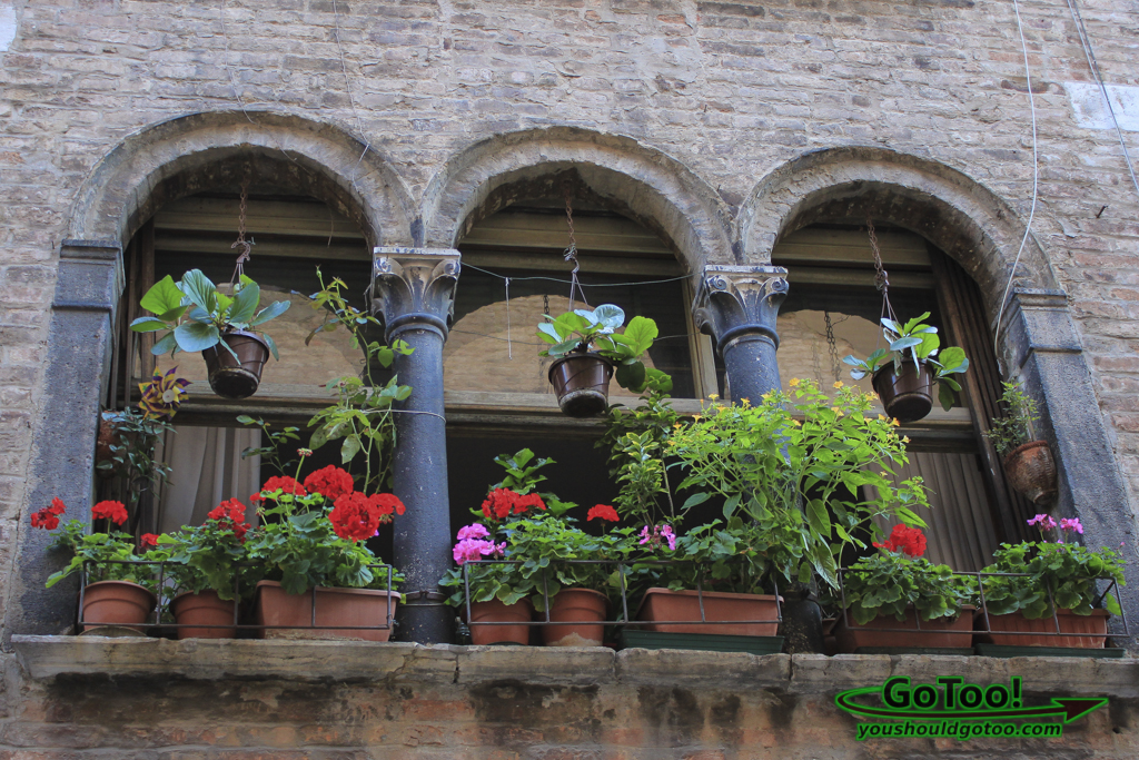 Architecture Details Flowers Windows Venice Italy