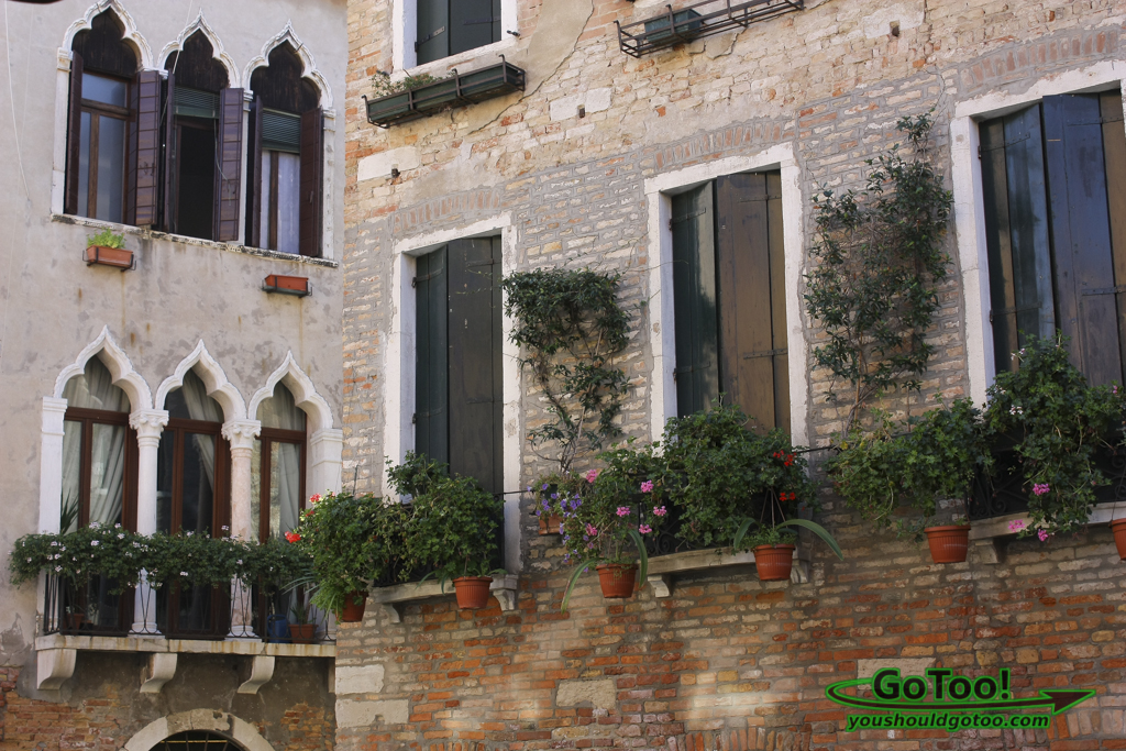 Architecture Windows Arches Venice Italy
