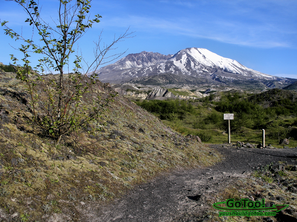 Boundary Trail Mt St Helens Hiking