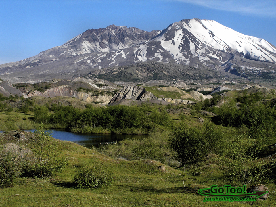 Mt St Helens Landscape Plant and Animal Renewal