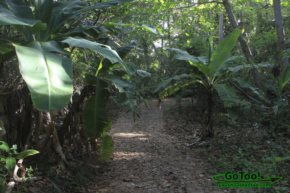 Path to Punta Tuna Beach in Maunabo