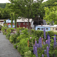Shelburne Falls, MA – Bridge of Flowers