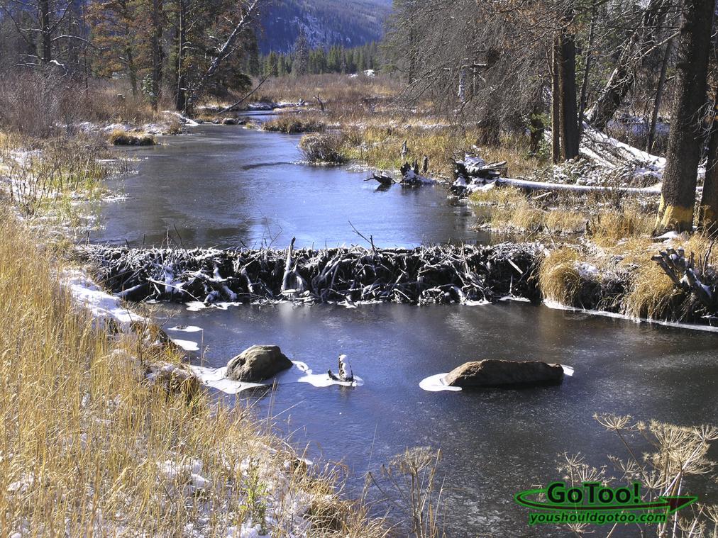 Beaver Dam Colorado