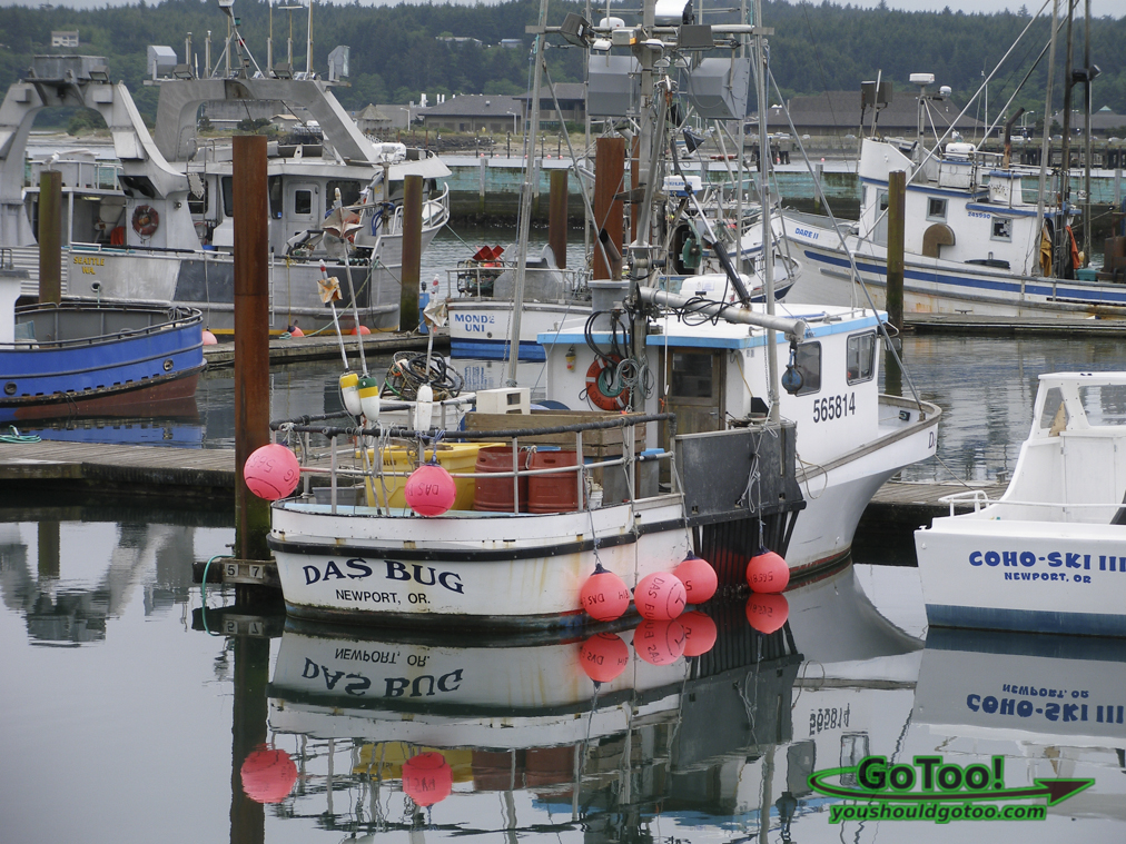 Boats in Newport Oregon