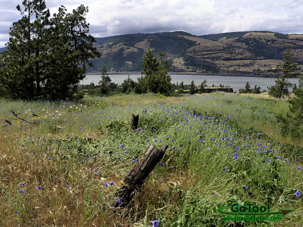 Columbia River Oregon