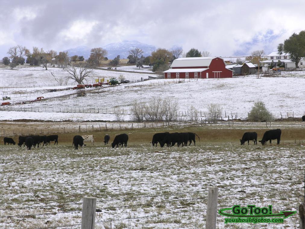 Farm in Colorado