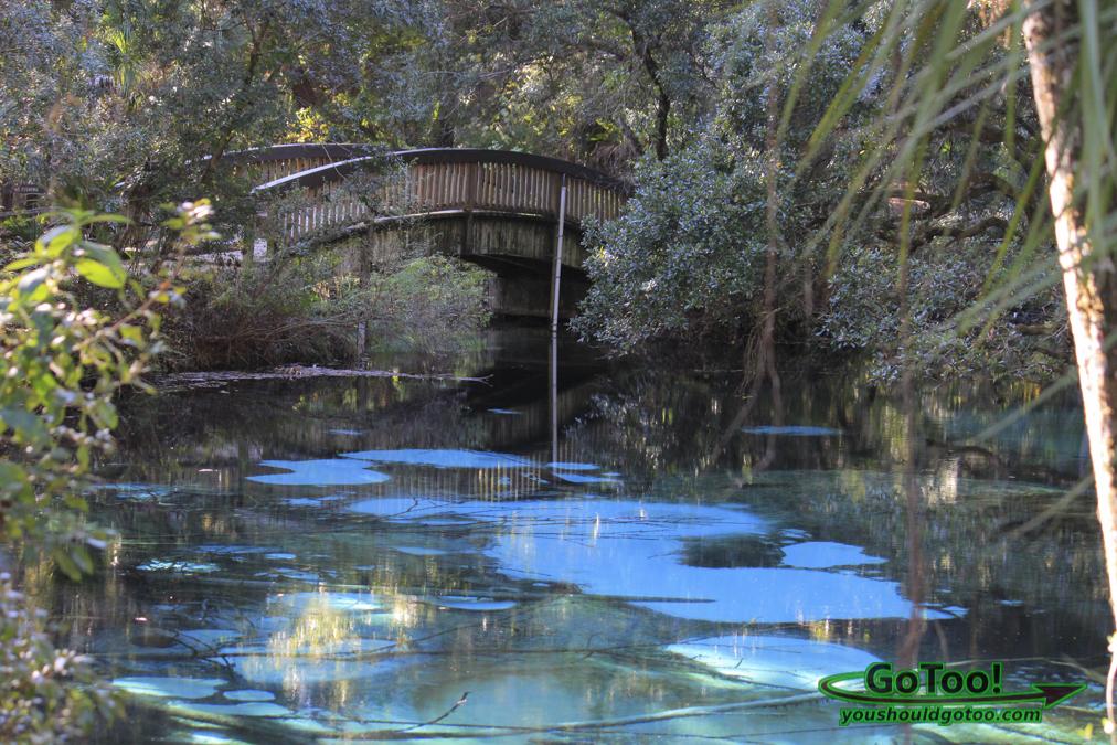 Juniper Springs in Florida