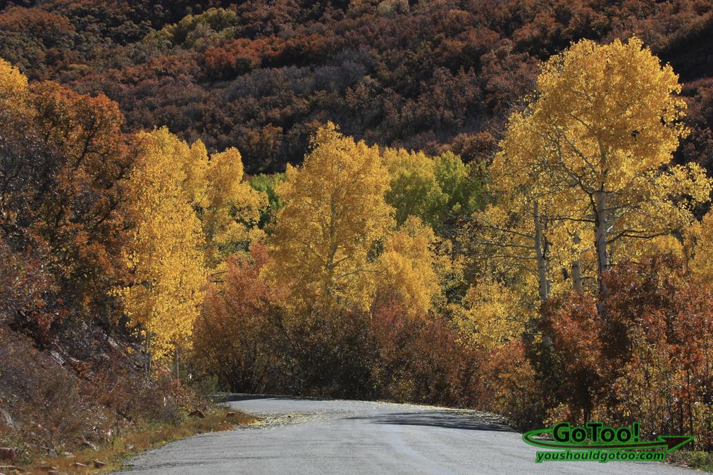 La Sall Loop Road Utah