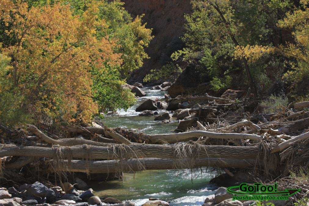 River in Zion