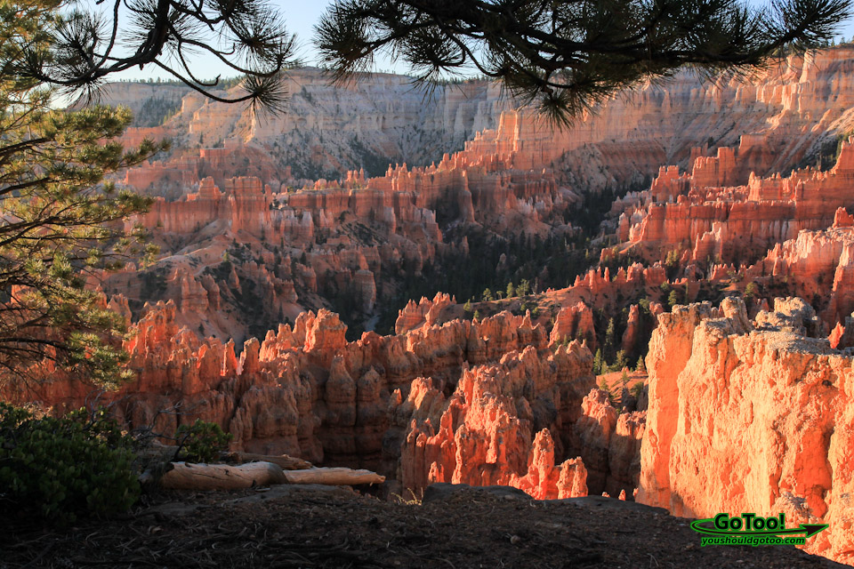 Bryce Canyon View Sunrise Hoodoos